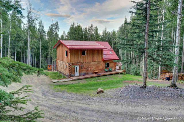 1268 Linz Drive, Fairbanks, AK 99712 (MLS #138063) :: Madden Real Estate