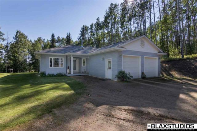 3941 Parks Ridge Road, Fairbanks, AK 99709 (MLS #138086) :: Madden Real Estate
