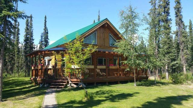 6034 Equinox Lane, Salcha, AK 99714 (MLS #138122) :: Madden Real Estate