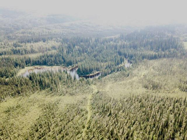 NHN Murphy Dome Road, Fairbanks, AK 99709 (MLS #138146) :: Madden Real Estate