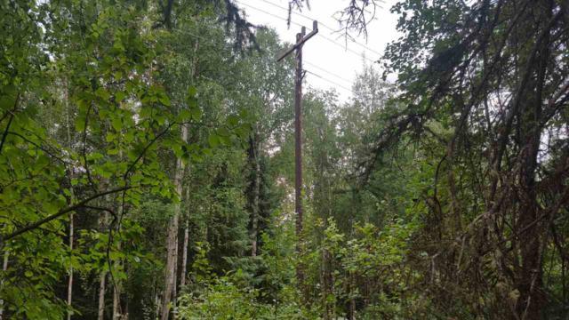 nhn Williston Way, Fairbanks, AK 99709 (MLS #138158) :: Madden Real Estate