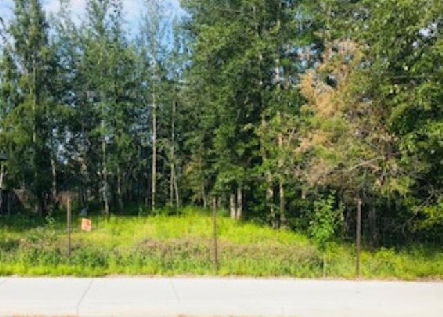 1636 Stacia Street, Fairbanks, AK 99701 (MLS #138171) :: Madden Real Estate