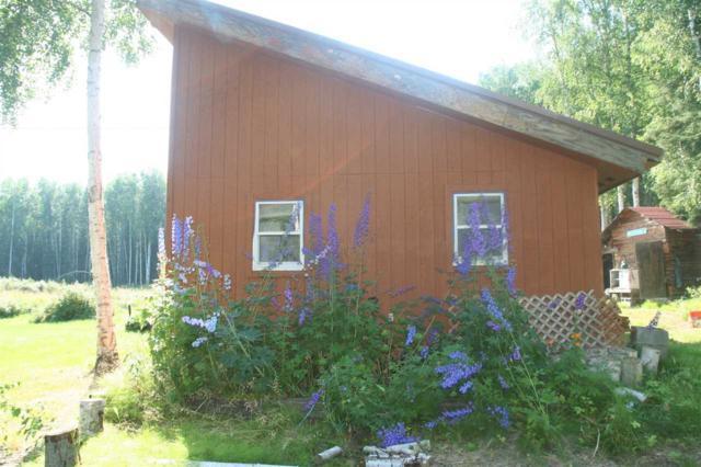 4941 Murphy Dome Road, Fairbanks, AK 99709 (MLS #138182) :: Madden Real Estate