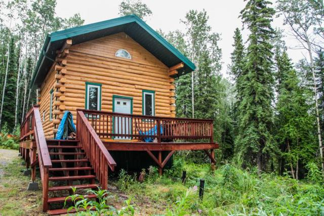 430 Stone Road, Ester, AK 99725 (MLS #138236) :: Powered By Lymburner Realty
