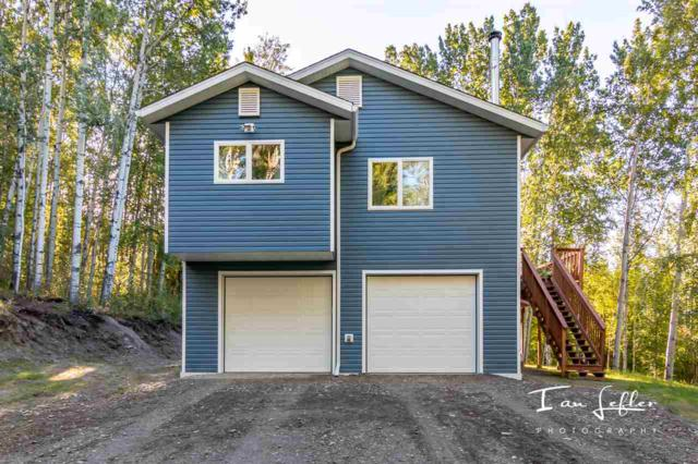 481 Summer Avenue, Fairbanks, AK 99712 (MLS #138288) :: Madden Real Estate