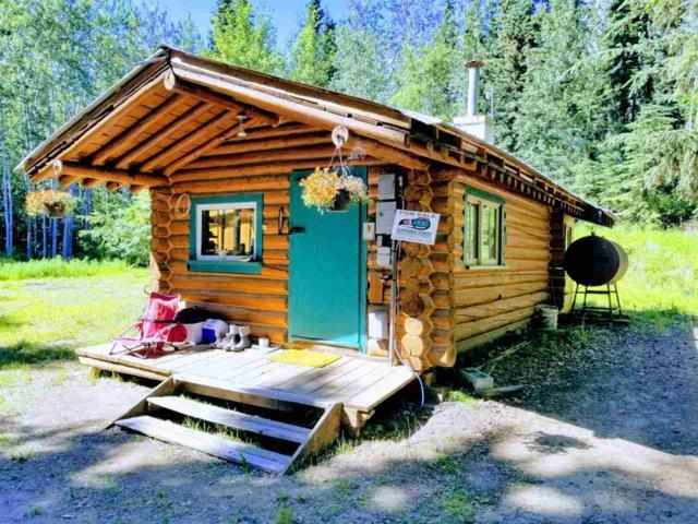 562 Ester Loop, Fairbanks, AK 99709 (MLS #138300) :: Madden Real Estate