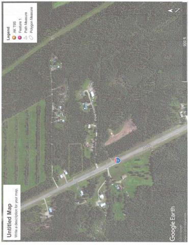 271.6 Richardson Highway, Delta Junction, AK 99737 (MLS #138307) :: Powered By Lymburner Realty