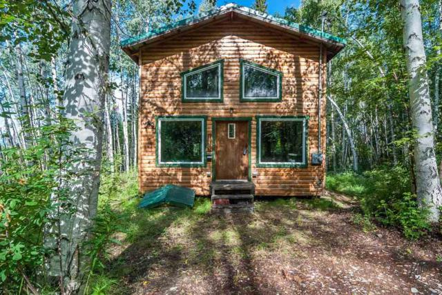 1920 Lynx Lane, Fairbanks, AK 99709 (MLS #138321) :: Madden Real Estate