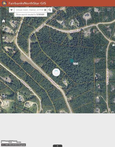 NHN Yeoman Drive, Fairbanks, AK 99709 (MLS #138326) :: Madden Real Estate