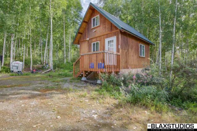 560 Moose Trot Avenue, Fairbanks, AK 99712 (MLS #138342) :: Madden Real Estate