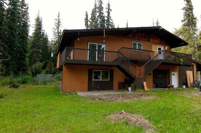 1437 Michael Lane, North Pole, AK 99705 (MLS #138418) :: Madden Real Estate