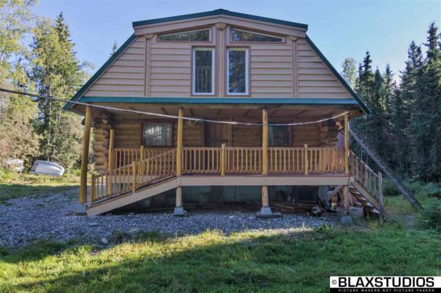 6551 Richardson Highway, Salcha, AK 99714 (MLS #138433) :: Madden Real Estate