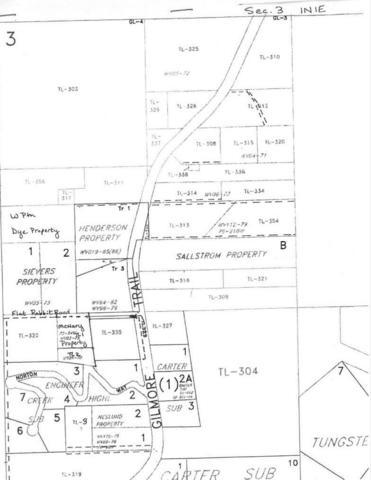 N/A Gilmore Trail, Fairbanks, AK 99712 (MLS #138482) :: Madden Real Estate