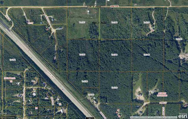 nhn Winch Rd, Fairbanks, AK 99712 (MLS #138494) :: Madden Real Estate