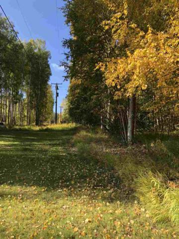 NHN Eagle Ridge Road, Fairbanks, AK 99712 (MLS #138574) :: Madden Real Estate