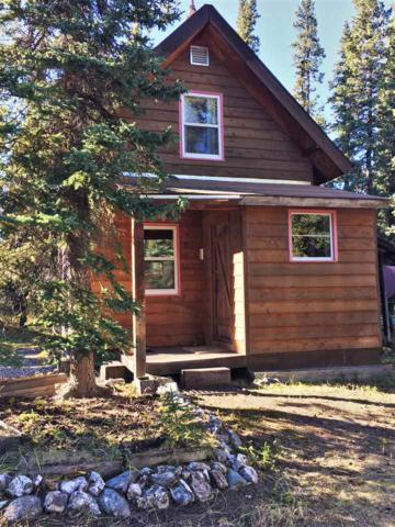 Mile 261 Parks Highway, Healy, AK 99743 (MLS #138610) :: Powered By Lymburner Realty