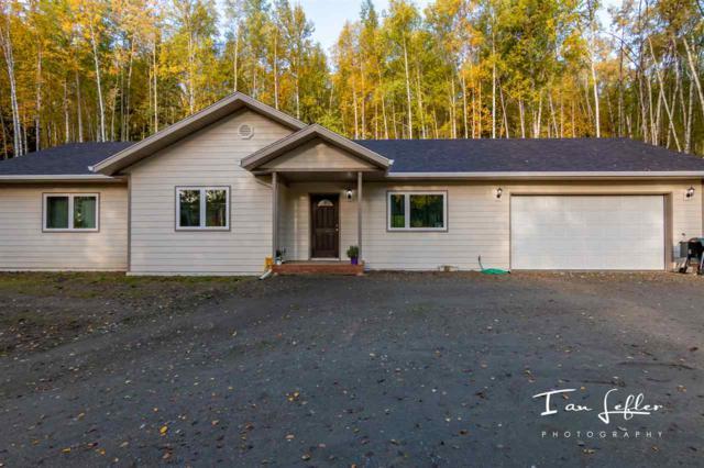 3540 Moose Mountain Road, Fairbanks, AK 99709 (MLS #138629) :: Madden Real Estate
