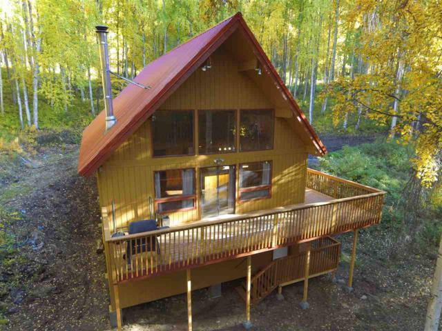 1095 Pika Road, Fairbanks, AK 99709 (MLS #138630) :: Madden Real Estate