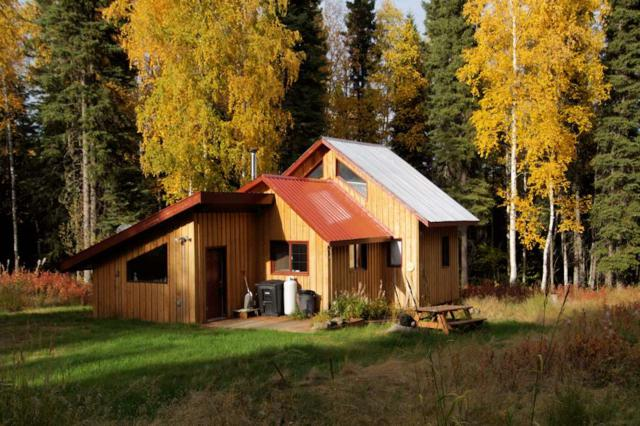 8656 Parks Highway, Fairbanks, AK 99709 (MLS #138661) :: Madden Real Estate