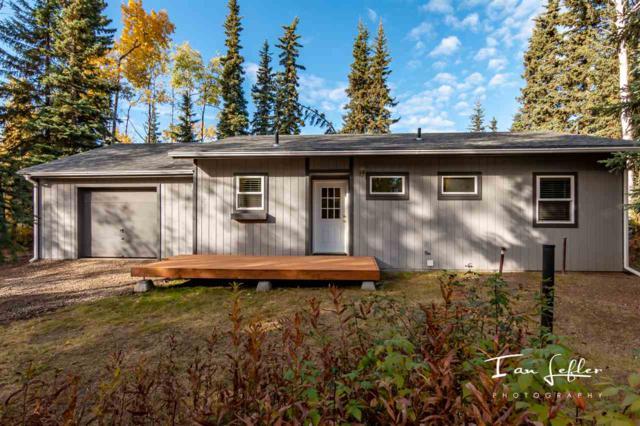 1893 Long Circle, North Pole, AK 99705 (MLS #138663) :: Madden Real Estate