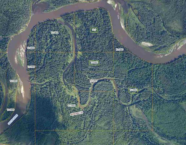 nhn Salcha River, Salcha, AK 99714 (MLS #138692) :: Madden Real Estate