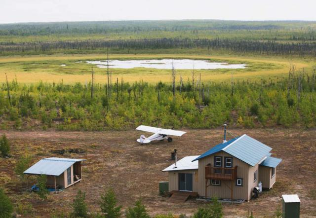 nhn Dune Lake, Nenana, AK 99754 (MLS #138716) :: Powered By Lymburner Realty