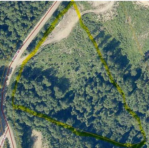 NHN Violet Drive, Fairbanks, AK 99712 (MLS #138718) :: Madden Real Estate