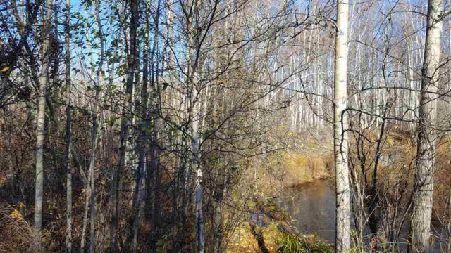 NHN Cosna Avenue, Nenana, AK 99706 (MLS #138772) :: Madden Real Estate