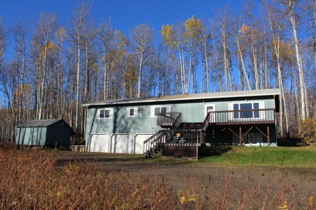 164 Sacia Avenue, Fairbanks, AK 99712 (MLS #138774) :: Madden Real Estate