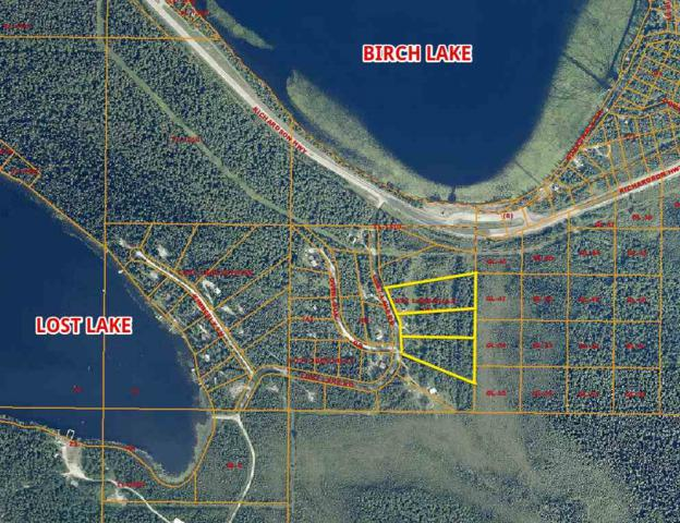 NHN Lost Lake Road, Salcha, AK 99714 (MLS #138840) :: Madden Real Estate