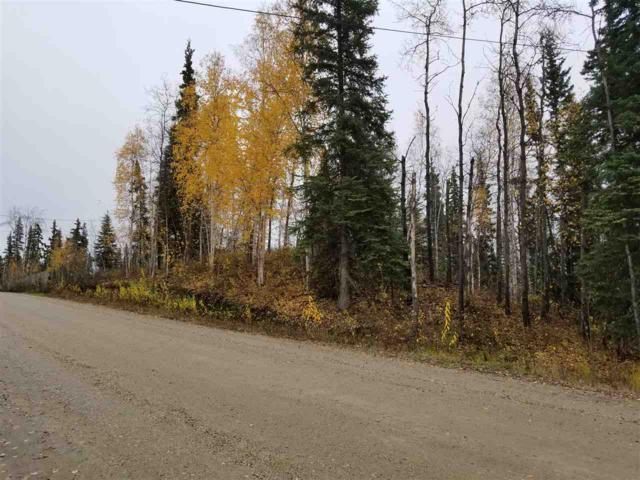 1020 Pickering Drive, Fairbanks, AK 99709 (MLS #138843) :: Madden Real Estate