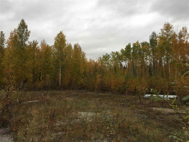 NHN Hollowell Road, North Pole, AK 99705 (MLS #138858) :: Madden Real Estate