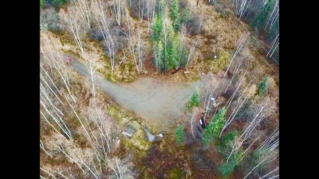 815 Duckwood Court, Fairbanks, AK 99712 (MLS #138878) :: Madden Real Estate