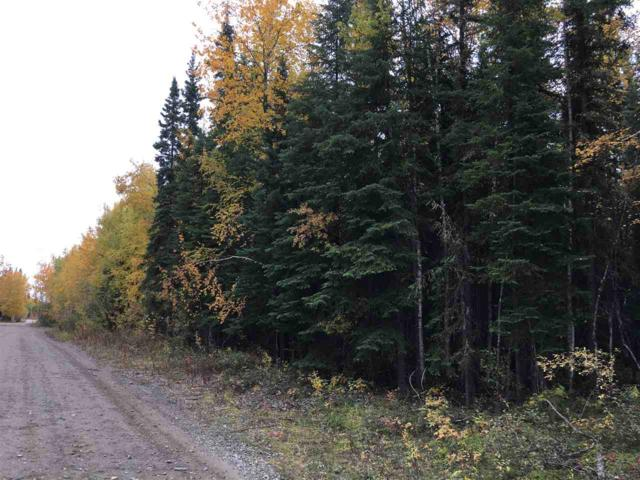 NHN Bear Avenue, North Pole, AK 99705 (MLS #138882) :: Madden Real Estate