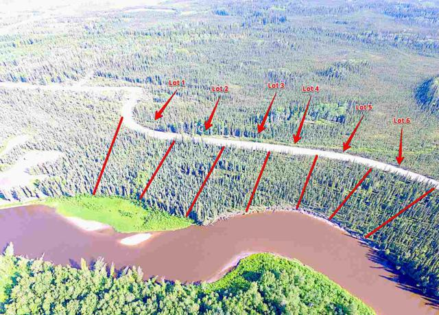 LOT 5 Chena Bend Drive, North Pole, AK 99705 (MLS #138912) :: Powered By Lymburner Realty