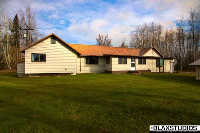 NHN Mcafee Road, Delta Junction, AK 99737 (MLS #138915) :: Madden Real Estate