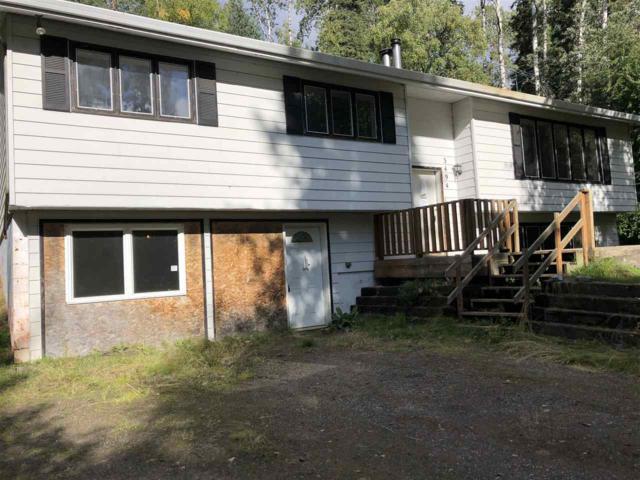 3494 Mink Lane, Fairbanks, AK 99712 (MLS #138936) :: Madden Real Estate
