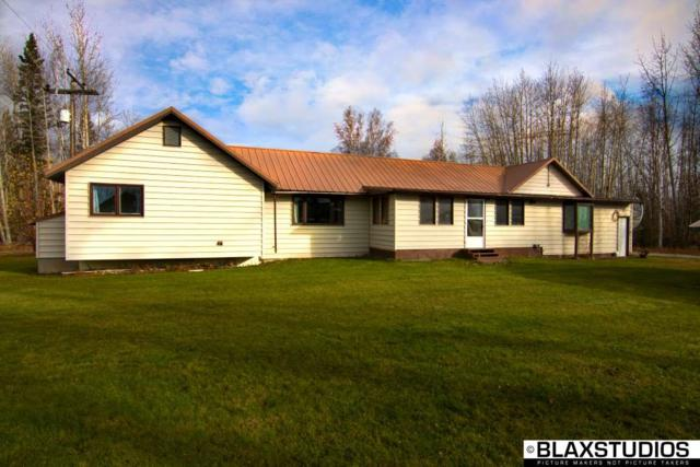 NHN Mcafee Road Nhn, Delta Junction, AK 99737 (MLS #138951) :: RE/MAX Associates of Fairbanks