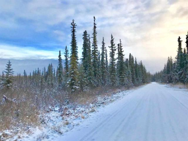 nhn Constitution Drive, Fairbanks, AK 99709 (MLS #139005) :: Powered By Lymburner Realty