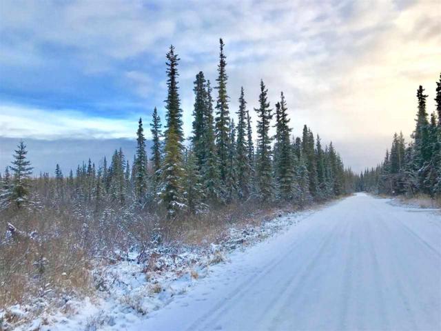 nhn Constitution Drive, Fairbanks, AK 99709 (MLS #139005) :: Madden Real Estate