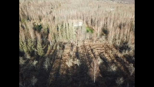 795 Spudwood Road, Faibanks, AK 99712 (MLS #139082) :: Madden Real Estate