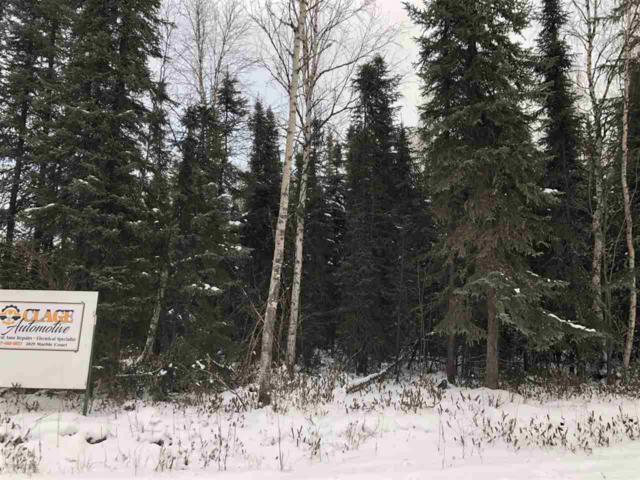 NHN Marble Court, North Pole, AK 99705 (MLS #139095) :: Madden Real Estate