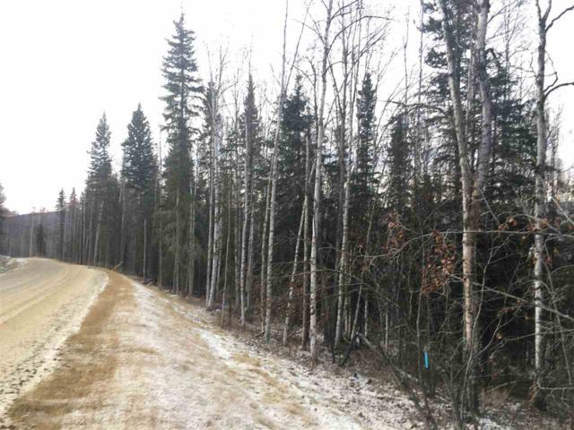 NHN Northridge Road, Fairbanks, AK 99709 (MLS #139099) :: Madden Real Estate