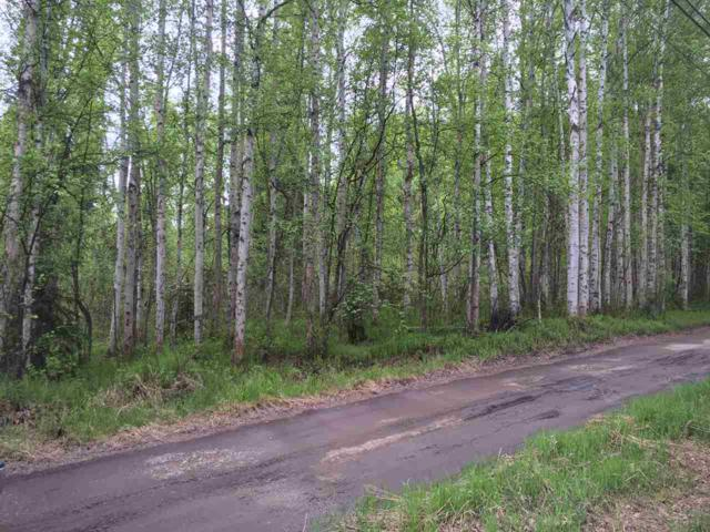 NHN Carl Crosman Way, North Pole, AK 99705 (MLS #139135) :: Madden Real Estate