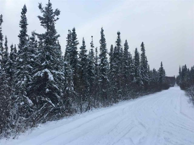 NHN Rambling Road, Fairbanks, AK 99712 (MLS #139151) :: Madden Real Estate