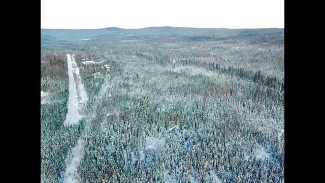 NHN Love Road, Fairbanks, AK 99712 (MLS #139163) :: Madden Real Estate