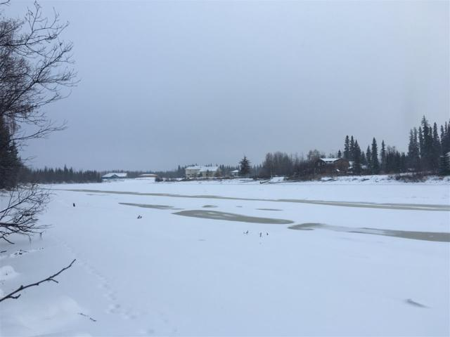 NHN Dale Road, Fairbanks, AK 99709 (MLS #139191) :: Madden Real Estate