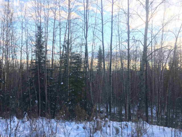 NHN Hirn Road, Fairbanks, AK 99712 (MLS #139193) :: Madden Real Estate