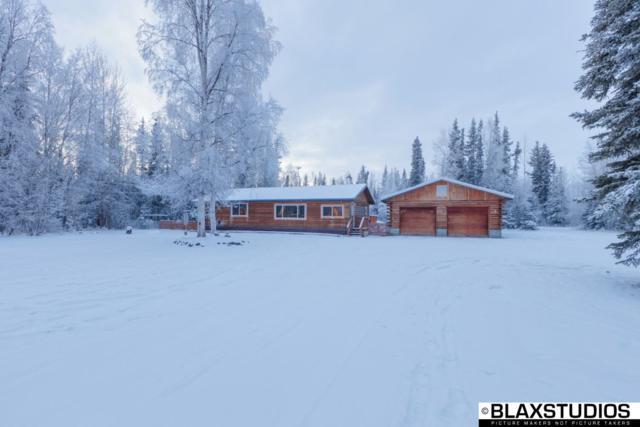 6725 Richardson Highway, Salcha, AK 99714 (MLS #139216) :: Madden Real Estate
