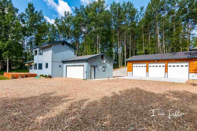 460 Snowy Owl Lane, Fairbanks, AK 99712 (MLS #139223) :: Madden Real Estate